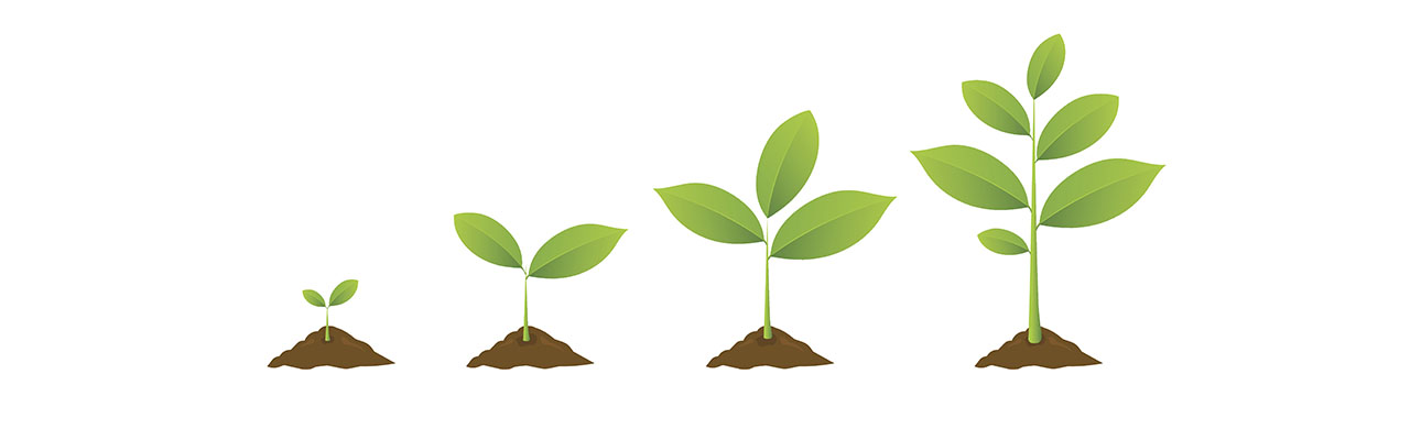 Spring Stewardship Workshops