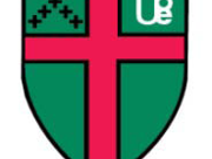 UBE shield