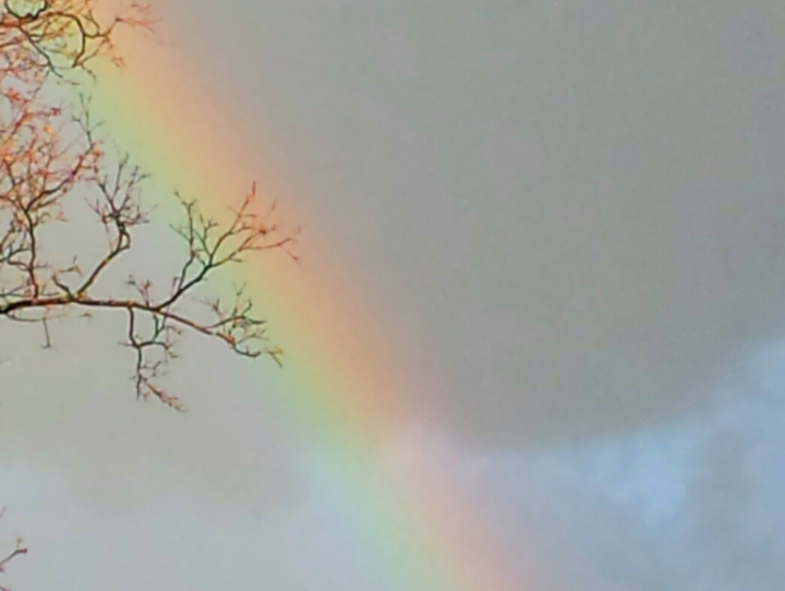 Photograph of a bright colorful rainbow in the sky