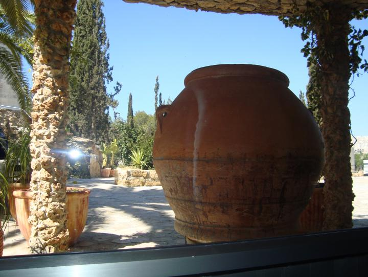 Lush greenery & large stone wine jar stand in vineyard, modern day Israel.