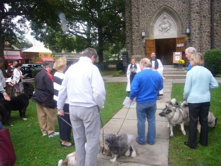St. James', Upper Montclair's Blessing of the Animals. SHELLEY EMLING PHOTO
