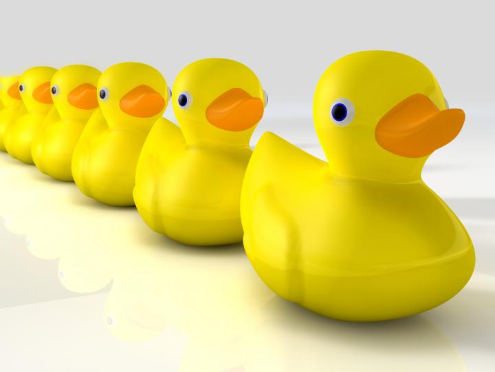 Ducks in a row: College & financial aid application pointers