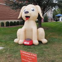 "Holy Spirit, Verona's ""A Celebration of Pets"" in the Verona Town Hall Square. RANDY JOHNSON PHOTO"