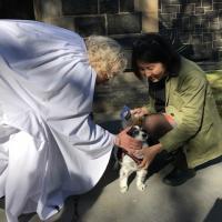The Rev. Elaine Ellis Thomas of All Saints, Hoboken blessing a dog. PHOTO COURTESY ALL SAINTS, HOBOKEN