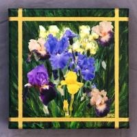 Presby Garden painting #1 by Debra Cook. These two paintings, of flowers in the Presby Memorial Iris Gardens in Montclair, were displayed in an art exhibit in Chelsea, New York, a few years ago.