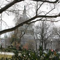 WASHINGTON: The Capitol Building. NINA NICHOLSON PHOTO