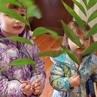 Eco-Palms at Christ Church, Bloomfield/Glen Ridge.